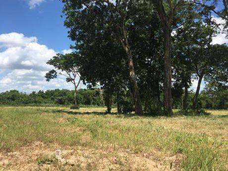 Hermoso Terreno En Esquina De 913,76 M2 $us 16.000 (por Urgencia De Salud)