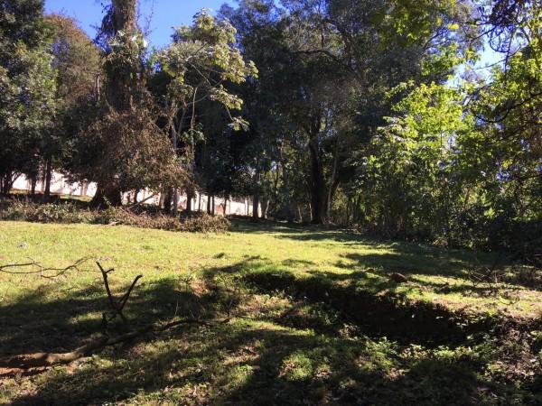 Vendo Terreno En El Paraná Country Club
