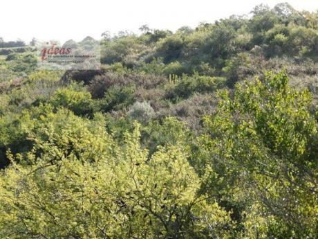 Campo, 100has En Rincón Del Colorado!!! Impresionantes Cualidades Naturales