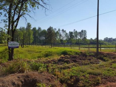 Vendo Terreno En Km 15 Acaray