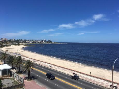 Apartamentos Venta Punta Gorda Montevideo 1 1/2 Dormitorios