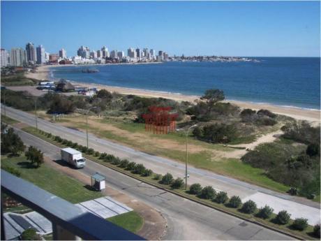 Apartamentos En Playa Mansa: Dyt10159a