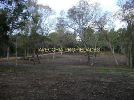 Chacras / Campos En Laguna Del Sauce: Iav172h