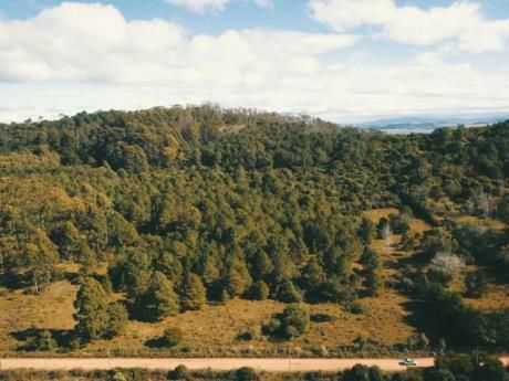 Chacras En Zona Rural - Ref: Pb1644