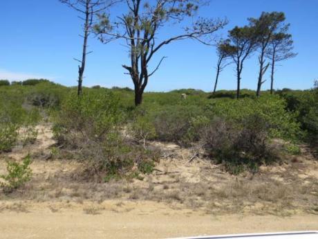 Terreno En Chihuahua - Ref: Pb632