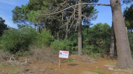 Terreno En Chihuahua - Ref: Pb651
