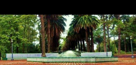 Monoambiente Con Hermosa Terraza