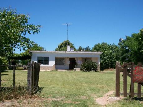 Vendo Campo Ruta 11 , Km 91500, Con Hermosa Casa . 11has