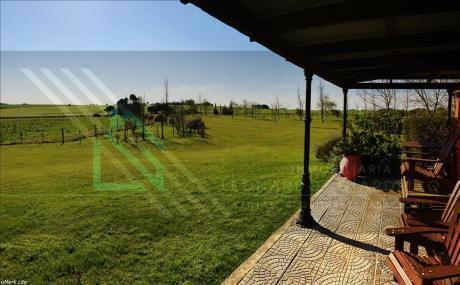 Fantástica Chacra A 12 Km Del Centro De Colonia | Naturaleza