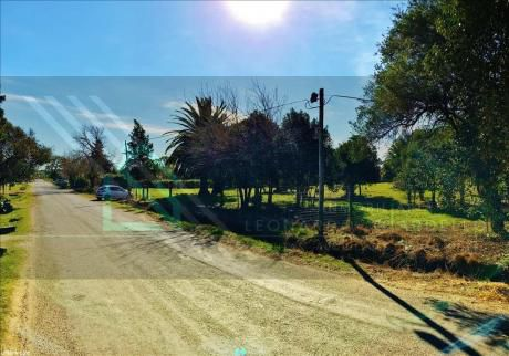 Gran Lote En Zona Urbana Ideal Para Desarrollo Inmobiliario