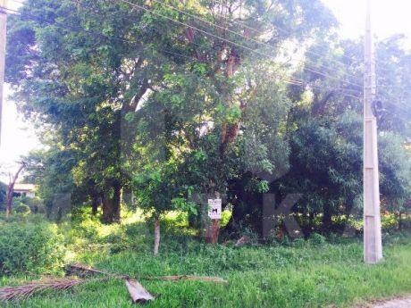 San Fernando Casi San Miguel
