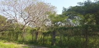 Vendo Espectaculares Terrenos En Lambaré A 50 Mts De FéLIX Bogado (71)