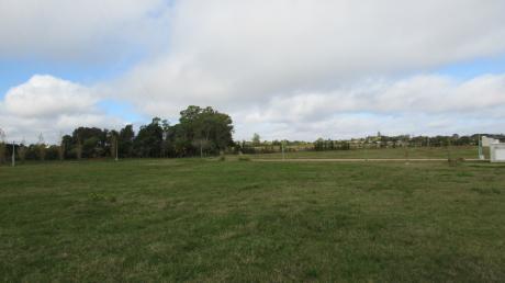 Terreno En Altos De San Carlos, En Altura