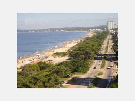 Apartamentos En Playa Mansa: Dga1915a