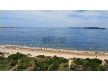 Apartamentos En Playa Mansa: Alv330a