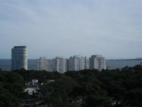 Apartamentos En Playa Mansa: Zda1452a