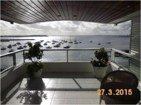 Apartamentos En Puerto Punta Del Este: Zda2003a