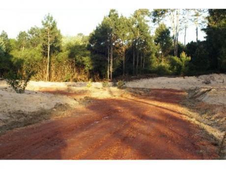 Terrenos En Pinares: Zda6144t