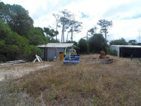 Terrenos En La Juanita: Cpt11626t