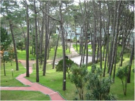 Apartamentos En Playa Mansa: Cro863a