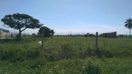 Terreno En Parque Industrial Latinoamericano