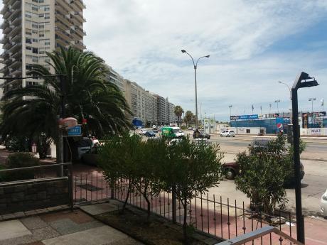 Local Comercial Pocitos Zona De Bancos