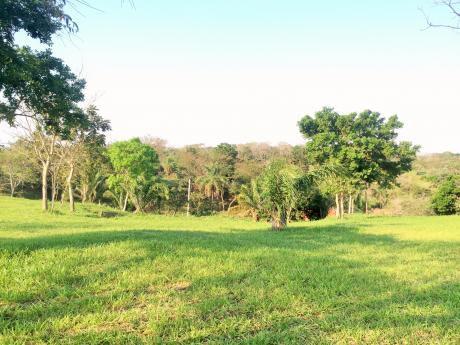 Terreno En Urubo Cond. Florida 1