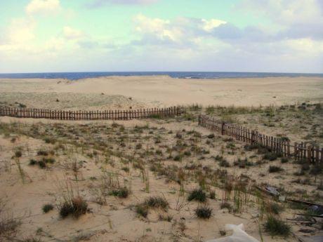 Hermoso Terreno En Punta Rubia Con Frente A La Rambla