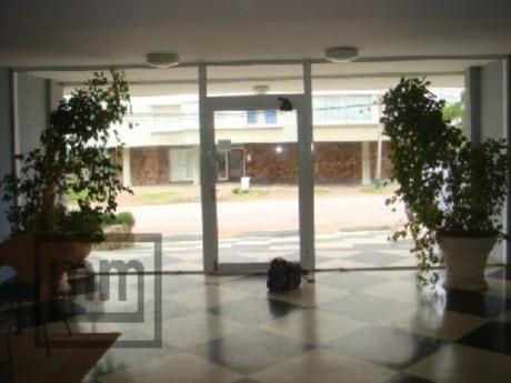 Apartamentos En Playa Brava: Mym3058a