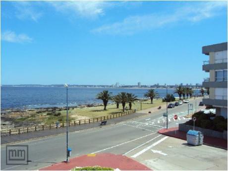 Apartamentos En Península: Mym342a