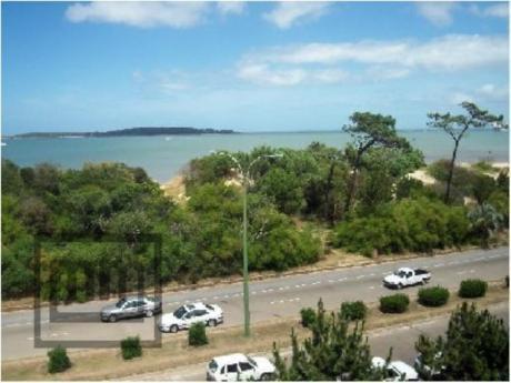 Apartamentos En Playa Mansa: Mym387a