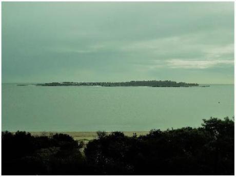 Apartamentos En Playa Mansa: Ocm374696a