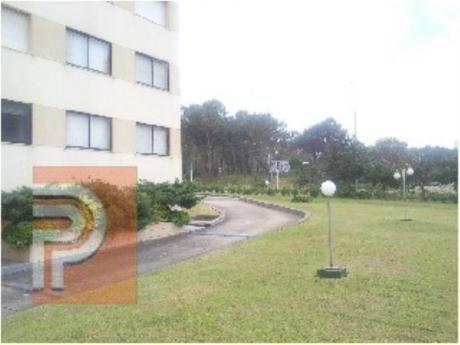 Apartamentos En Roosevelt: Plg2438a