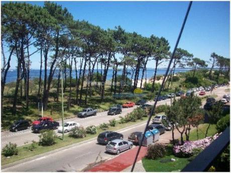 Apartamentos En Playa Mansa: Pla472a