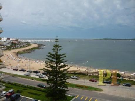 Apartamentos En Playa Mansa: Pti1001a