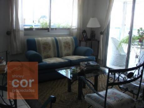 Apartamentos En Playa Mansa: Shc302a