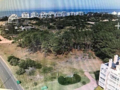 Terrenos En Playa Brava: Smn3t