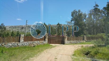 Chacras / Campos En Punta Del Este: Upp310h