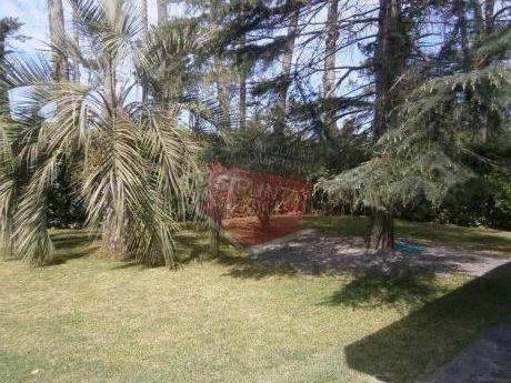 Casa A La Venta De 3 Dormitorios En San Rafael - Ref: 1275