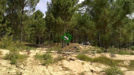 Parque Burnet, Muy Lindo Lote Para Hacer 2 Casas.
