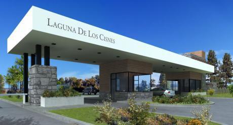 Laguna De Los Cisnes