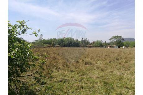 Vendo Terreno De 4 Hectáreas En Yaguaron