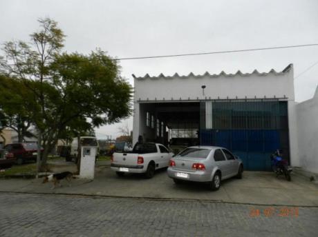 Locales Comerciales En Rocha