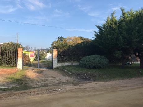 3 Dormitorios- 540 M2 De Terreno- Inmobiliaria Calipso