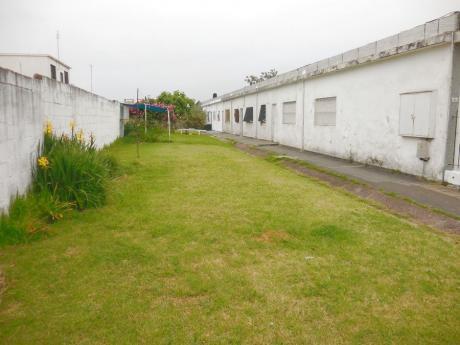 Apartamentos En Malvín Norte