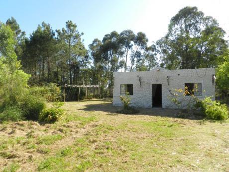 Casa Funcional, 3 Dormitorios Con Gran Terreno De 970m2