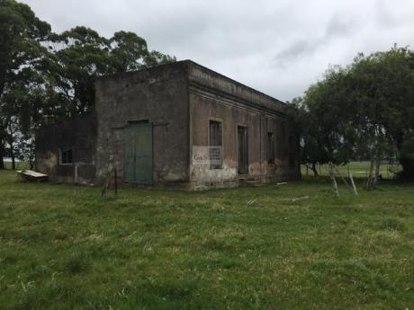 Campo De Aptitud Ganadero Forestal