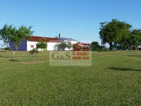 Campo En San José