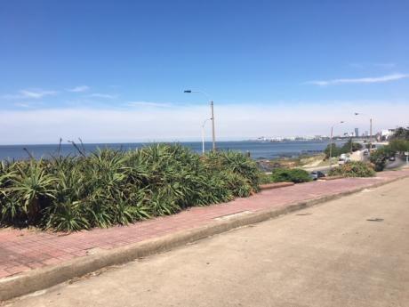 Increíble Calle ,cercano A Playa De Los Ingleses, Buen Metraje