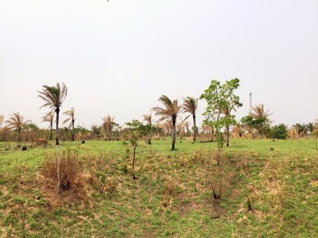 Terreno A 100mt De La Carretera A Porongo - Urubo